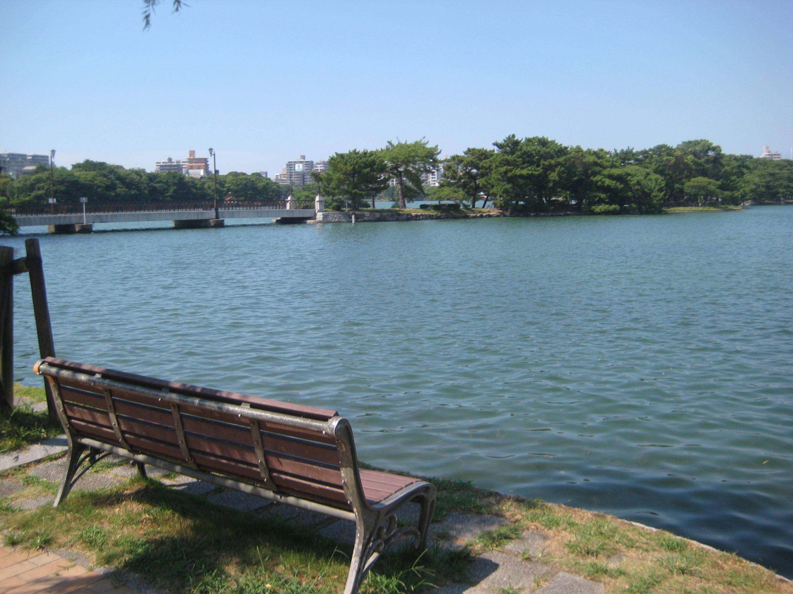 写真:大濠公園の池のほとり