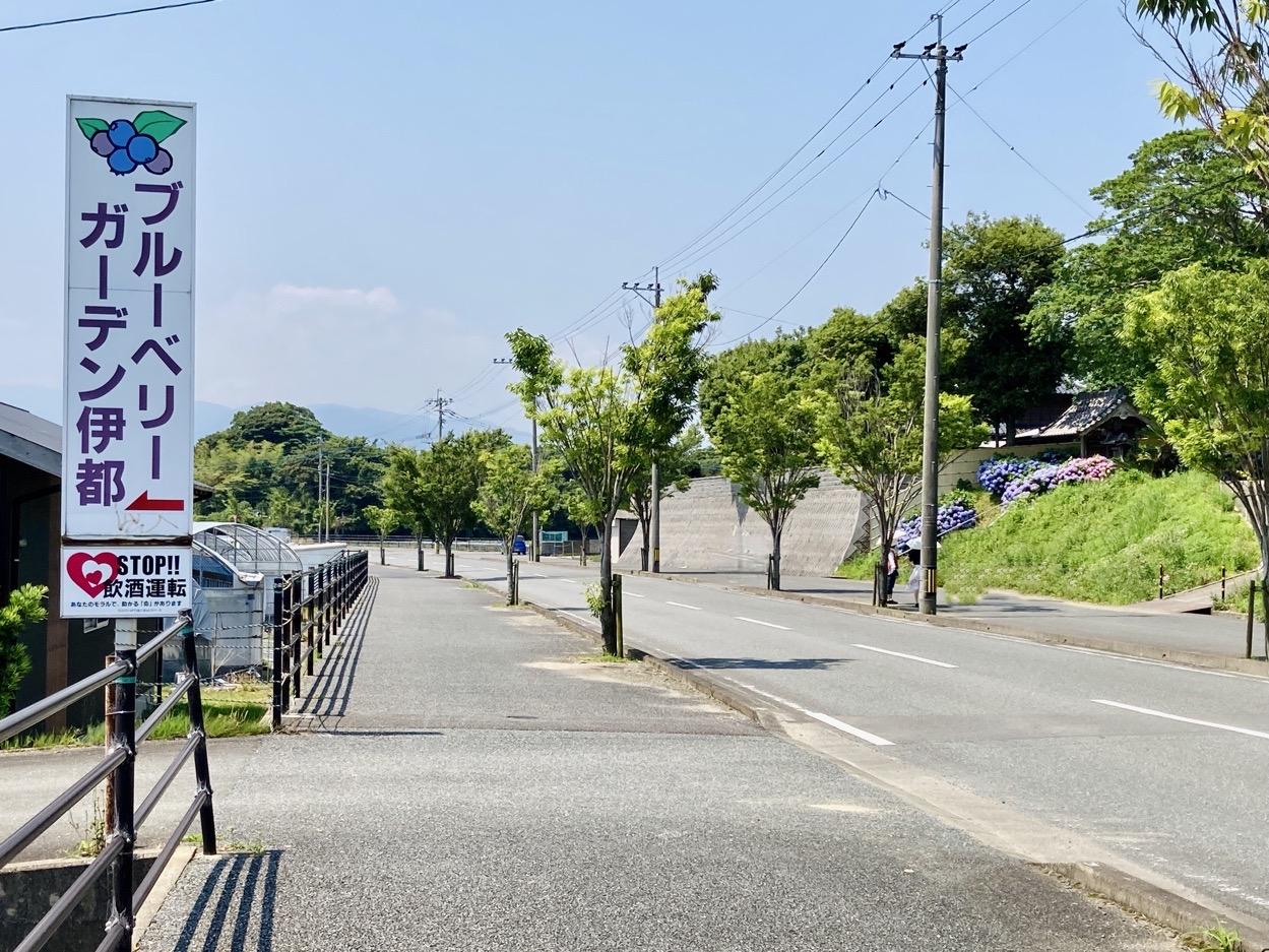 写真:糸島アジサイ寺前の道路