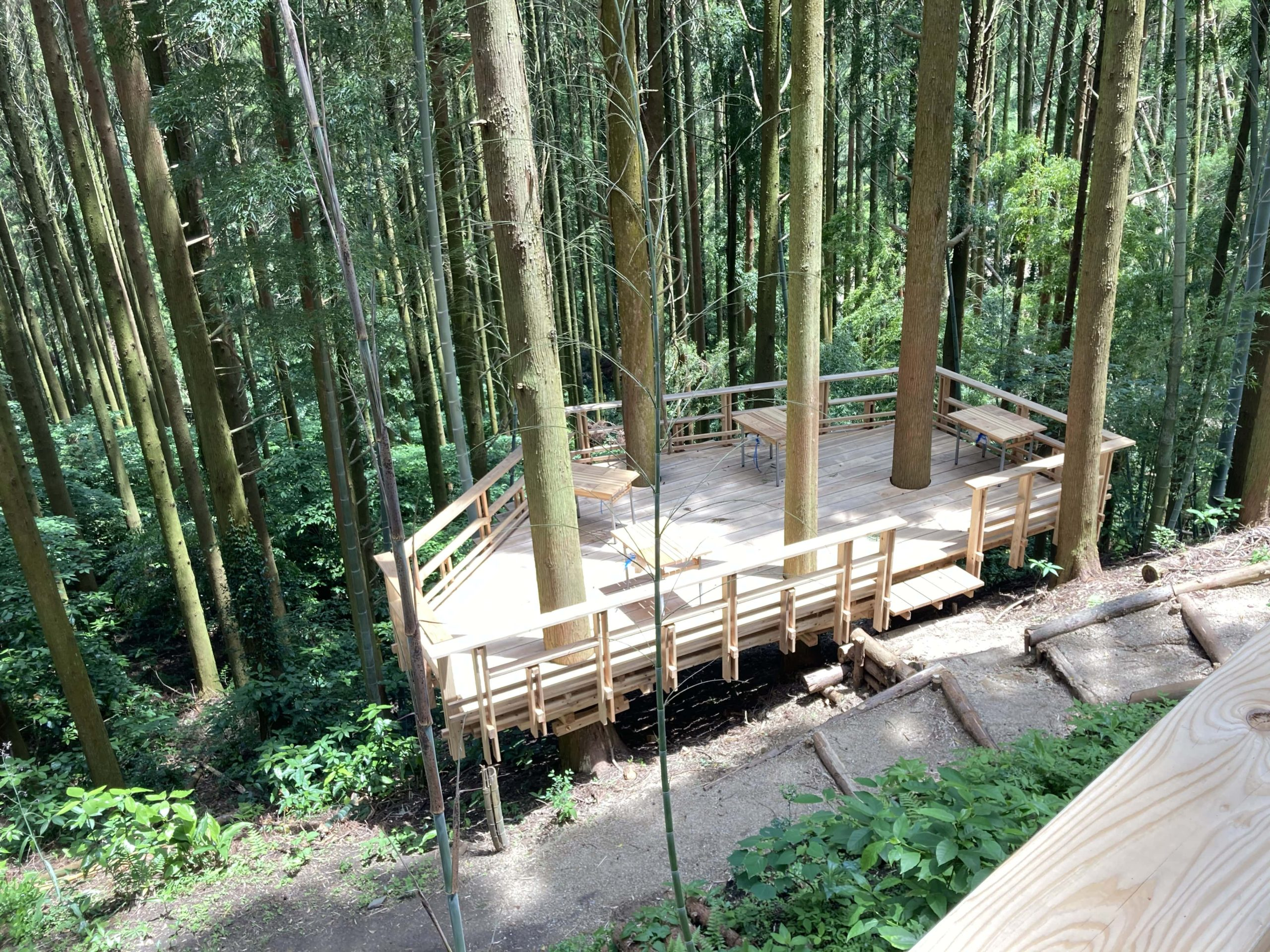 写真:森の中にあるデッキ