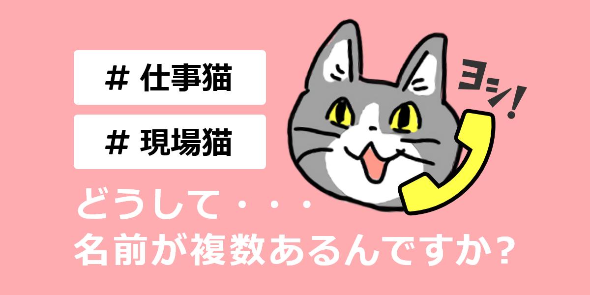 #仕事猫 #現場猫 どうして・・・名前が複数あるんですか?